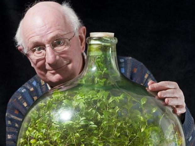 Enfermee-hermetiquement-pendant-53-ans-une-plante-a-cree-son-propre-ecosysteme-imagealaune