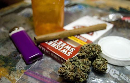 cannabis_5342392874_4dda32401e
